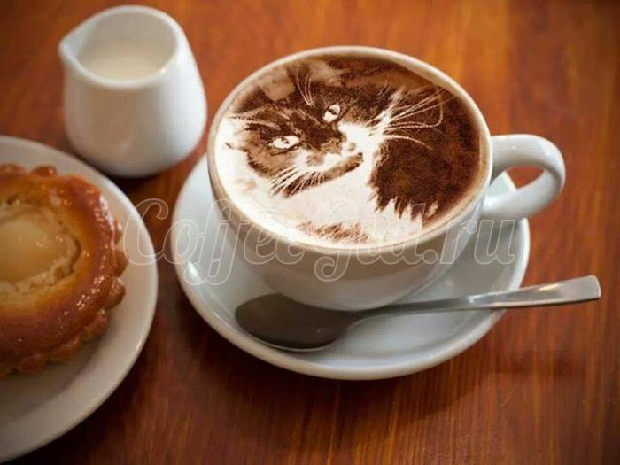 рисунок молоком на кофе