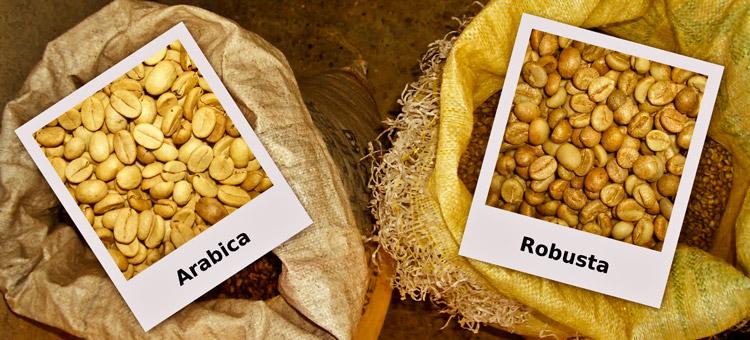 сравнение кофе